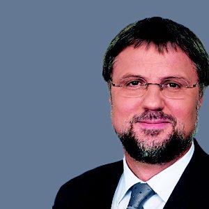 Wolfgang Grotthaus, MdB